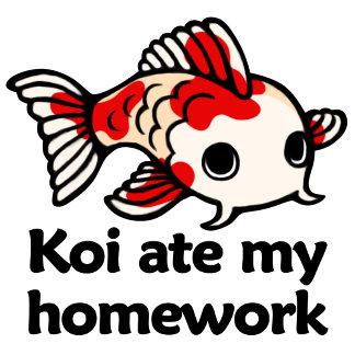 Koi ate my homework