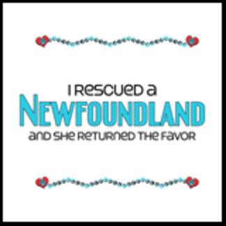 I Rescued a Newfoundland (Female Dog)