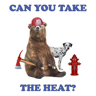 Fireman Take the Heat