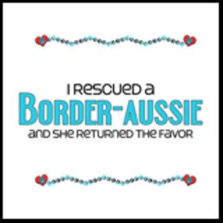 I Rescued a Border-Aussie (Female Dog)