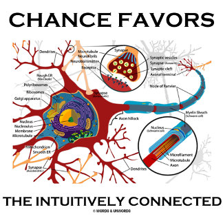 Chance Favors The Intuitively Connected Neuron