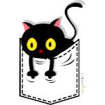kitty pocket.png