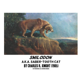 Smilodon A.K.A. Saber-Tooth Cat
