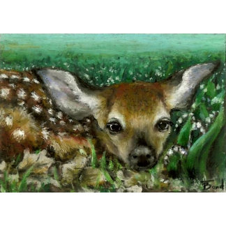 Fawns and Deers