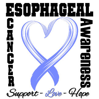 Esophageal Cancer Awareness Brushed Heart Ribbon