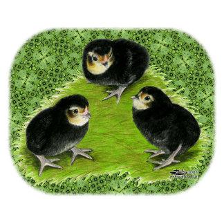 Bantam Chicks in the Garden