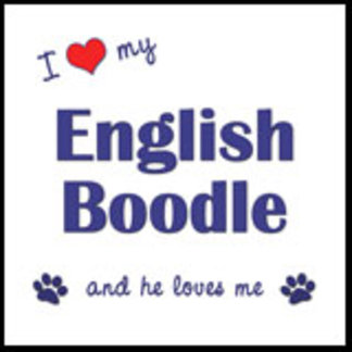 I Love My English Boodle (Male Dog)