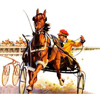 Harness Race