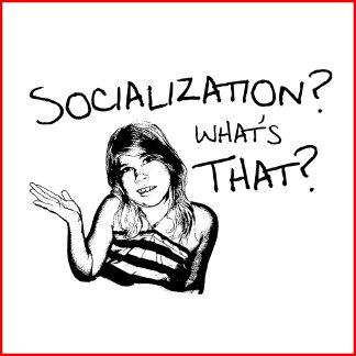 Socialization? What's That?