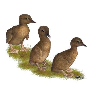 Ducklings:  Chocolate Runners