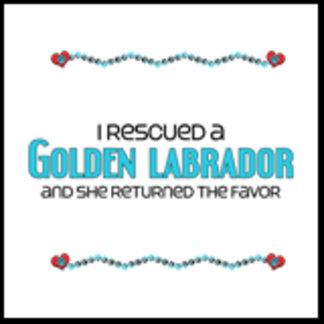 I Rescued a Golden Labrador (Female Dog)