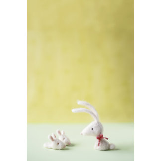 """""""Felt Bunny with Slippers Photo Poster Print"""""""
