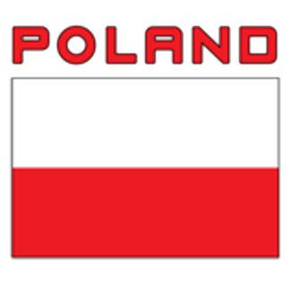 Polish Flag With Poland