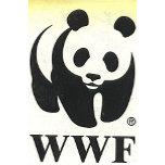 WWF Panda Award.jpg