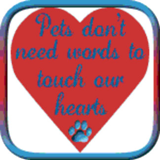 Touch Our Hearts