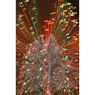 Live Oak Christmas Lights Zoom effect photograph