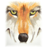 wolfoncanvassoft3.jpg