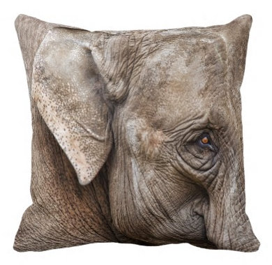 Pretty Pillows