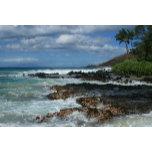 IMG_4237 Aloha Island Dreams Pa'ako Beach Makena M