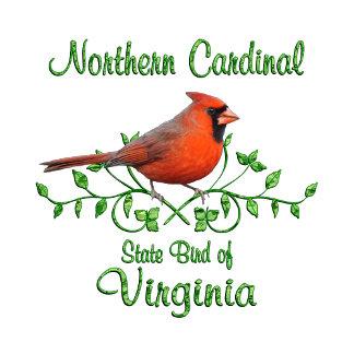 Cardinal Virginia Bird