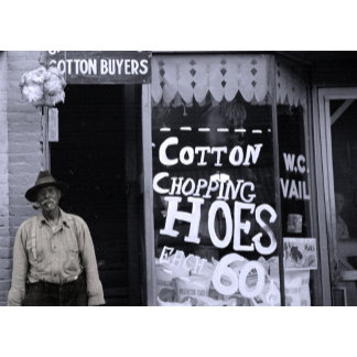 Cotton Chopping Hoes