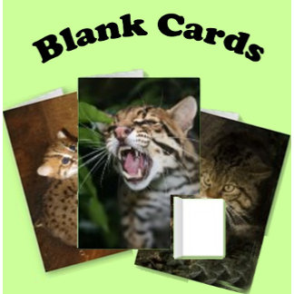 Cards - Blank