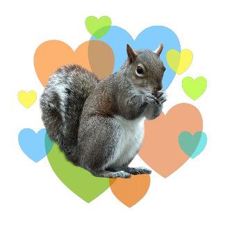 Squirrel Hearts