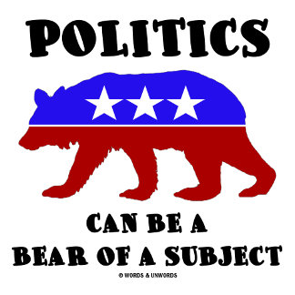 Politics Can Be A Bear Of A Subject