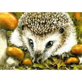 Hedgehog and yummy mushrooms