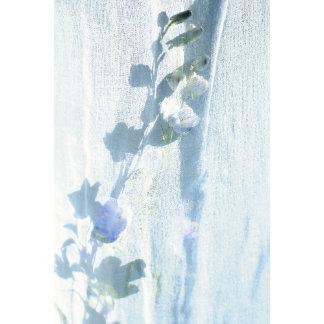 """blue delphinuim w/fabric poster print"""
