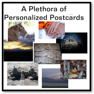 Postcards & Postage for All Occasions