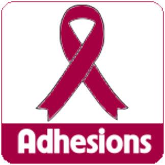 Adhesions Awareness