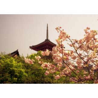 Asia, Japan, Kyoto, Kiyomizu temple in spring