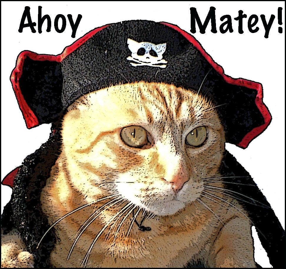 Kitty Pirate