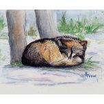 Wolf At Restb.jpg