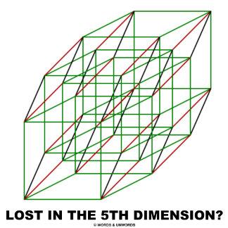 Lost In The 5th Dimension?