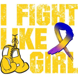 Bladder Cancer I Fight Like A Girl (Grunge)