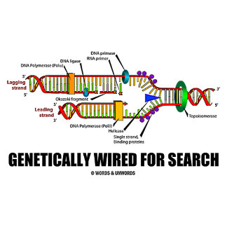 Genetically Wired For Search (DNA Replication)