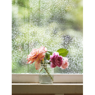 """""""bouquet in glass-window sill poster print"""""""