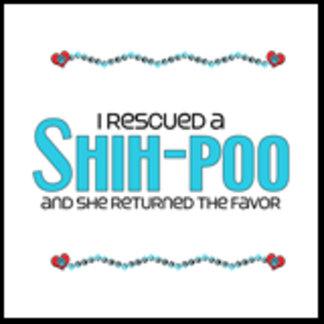 I Rescued a Shih-Poo (Female Dog)