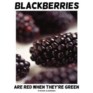 Blackberries Are Red When They're Green (Attitude)