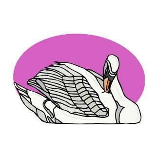 Sweemer Swan
