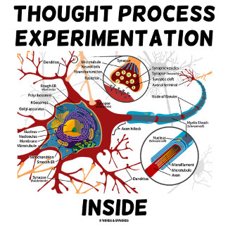 Thought Process Experimentation Inside Neuron