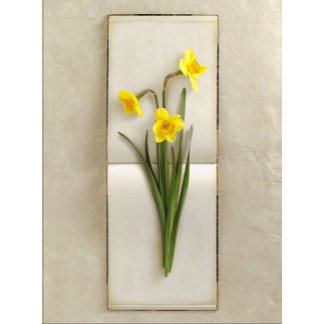 """""""daffodils/jonquils on book poster print"""""""