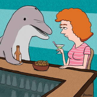Dolphin Humor
