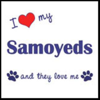 I Love My Samoyeds (Multiple Dogs)