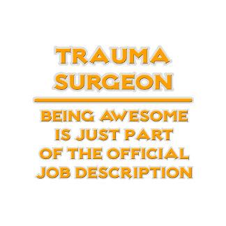 Awesome Trauma Surgeon .. Job Description