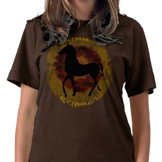 T-Shirts / Sweatshirts