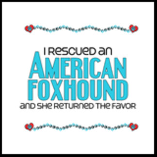 I Rescued an American Foxhound (Female Dog)