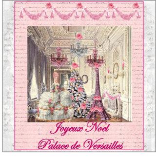 Joyeux Noel ~ Palace de Versailles